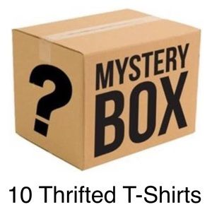 June's Mystery Box- 10 Men's Thrifted T-Shirts